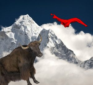 yak-and-red-best